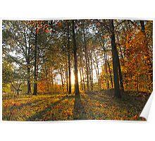 Michigan Fall Sunset Poster