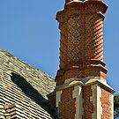 Greystone Mansion chimneys by Celeste Mookherjee