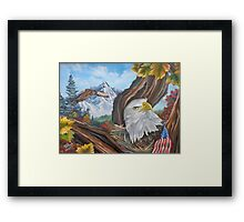 Don't touch his flag ! Framed Print