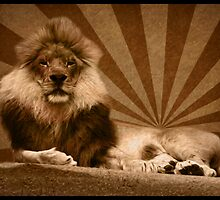 King of the Jungle by klh0853