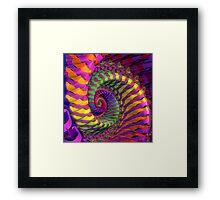 Coloured Spiral wheel Framed Print