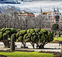 Parque del Buen Retiro, Madrid, Spain by Wendy  Rauw