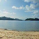Island Life - Caramoan, Philippines by Wayne Holman