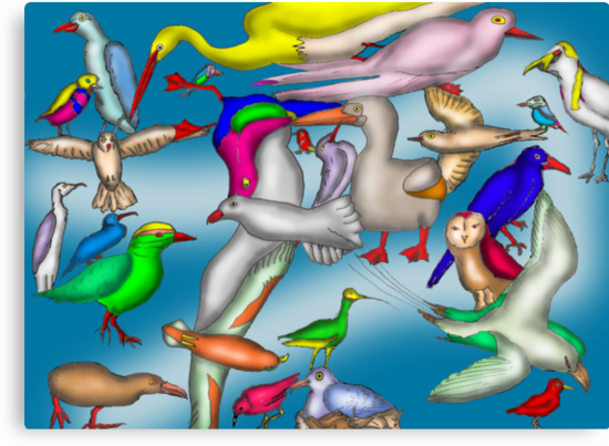 Lord Howe Island Birds by David Fraser
