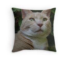 Noble Cat Throw Pillow