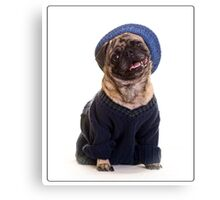 Cute Pug wearing hat and sweater Canvas Print