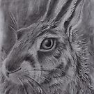 'Portrait of a Brown Hare' by gilliantoft