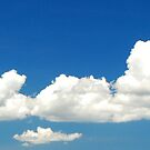 Sky (View Large Please) by Leon Heyns
