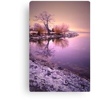 Winter Light Reflected Canvas Print