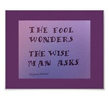 """The Fool Wonders"" by Melissa Goza"