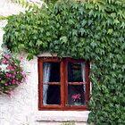 Cottage Window by © Loree McComb