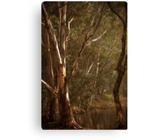 Theres those Two Tall Trees Again By Lorraine McCarthy Canvas Print