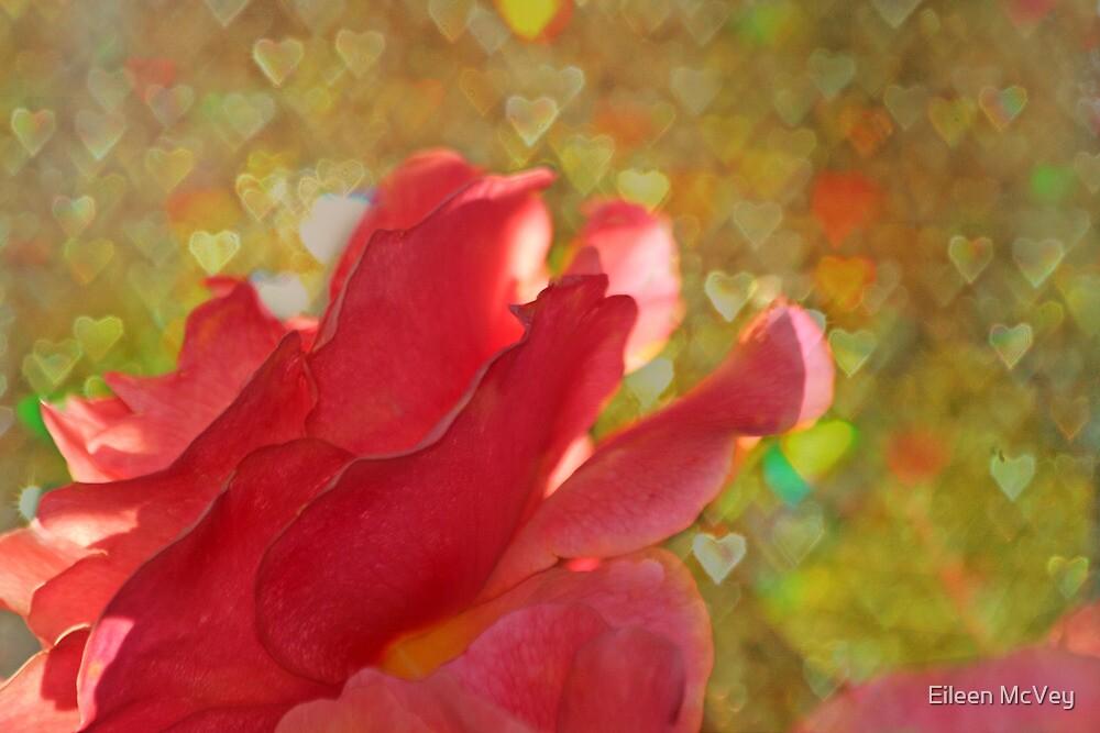 Valentine Rose by Eileen McVey