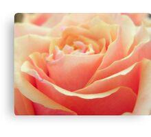 Peach Beauty Canvas Print