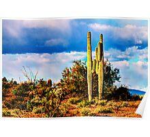 Scenic Desert Poster