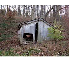 Forest Shed Photographic Print