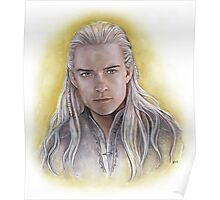 Elven Prince Poster