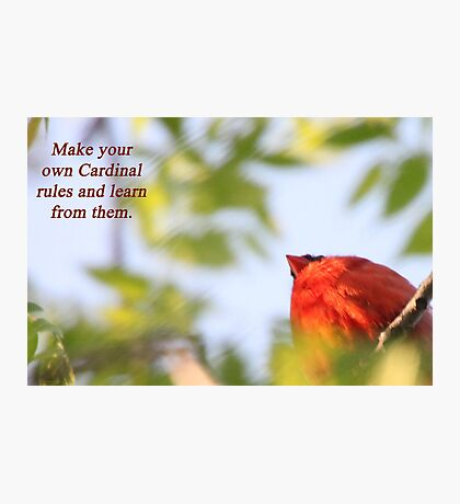 Make your own Cardinal rules and learn from them. Photographic Print
