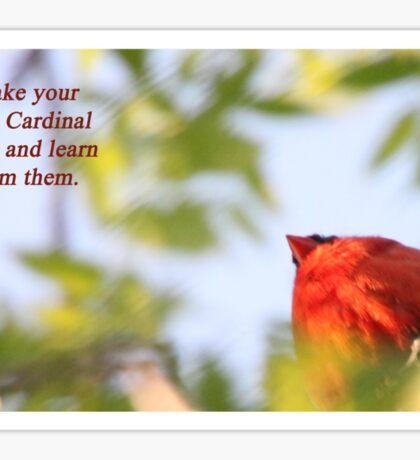 Make your own Cardinal rules and learn from them. Sticker