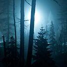 Berguen Blues by UniSoul