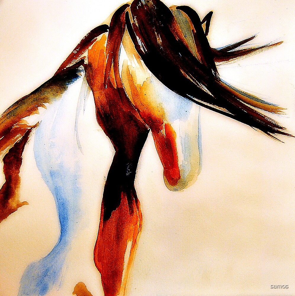 wild paint horse by samos