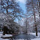 Wintery park Landscape  by Sandra Caven