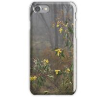 Adornment by Lorraine McCarthy iPhone Case/Skin