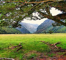 Matukituki Valley, NZ by andreisky