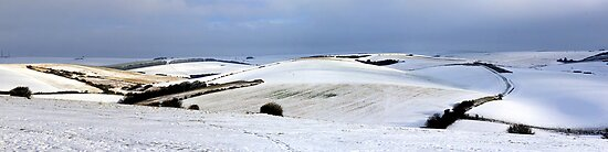 Winter on the Downs by mikebov
