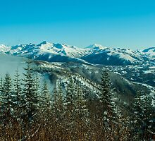 Mount Adams in the Distance by tsarts