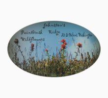 Paintbrush wildflowers, Johnston's Ridge oval Baby Tee