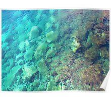Ocean Floor Poster