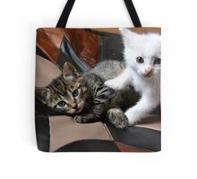 Playing cats Tote Bag