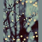 Winter Lights - Iphone case  by sullat04