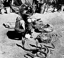 (Poor Thing) Snake Charmer. by Andy Nawroski