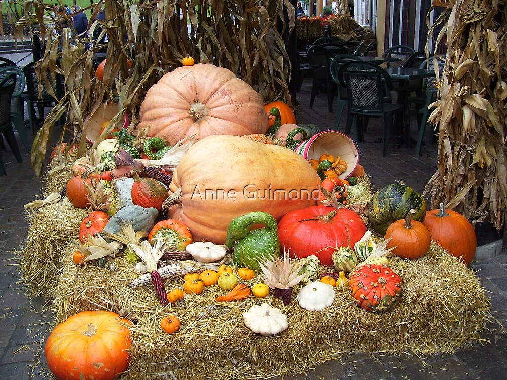 Pumpkins and Family by Anne Guimond