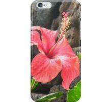 Hibisceae Hibiscus  iPhone Case/Skin