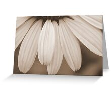 A Ripple of Petals Greeting Card