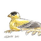 Sketch -- Mythological House Griffin: Goldfinch Variety by Stephanie Smith