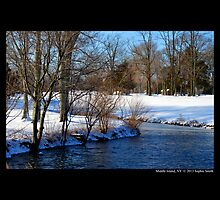 Bartlett Pond In Winter  by © Sophie W. Smith