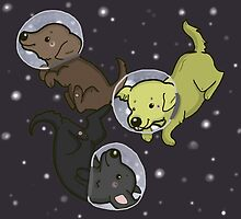 Labs In Space by thehappydog