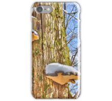 Snow catcher iPhone Case/Skin