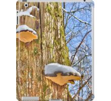 Snow catcher iPad Case/Skin