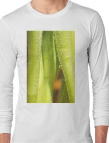 Someone gave us tulips Long Sleeve T-Shirt