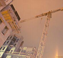 Budapest House Renovation by Ilona Barna