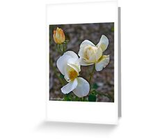 Made in Nature Greeting Card
