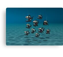 Shoal of Daft Piranha with old Duffer Fish Canvas Print