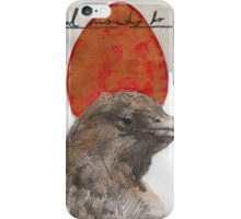 Red Red Egg iPhone Case/Skin