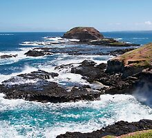 Blow Hole, The Nobbies, Phillip Island by haymelter