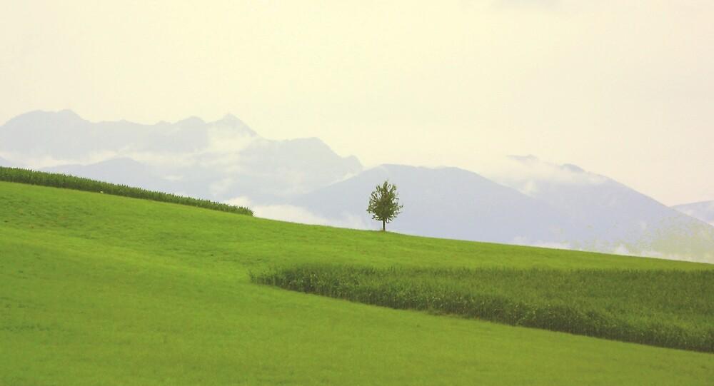 Quiet Solitude by jeune-jaune